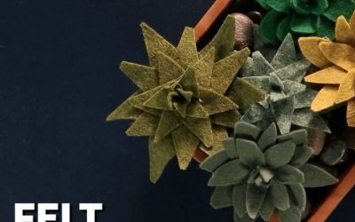 Felt Succulents = Gorgeous!